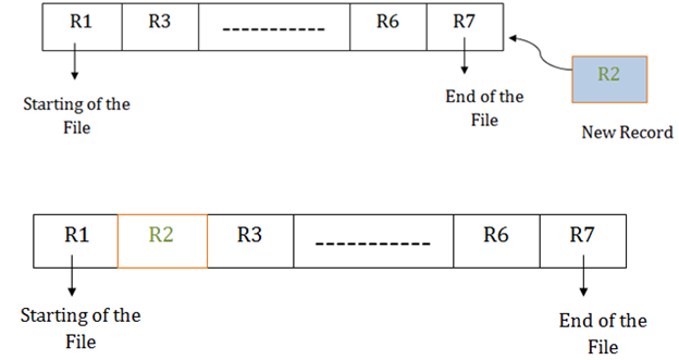 DBMS Sequential File Organization