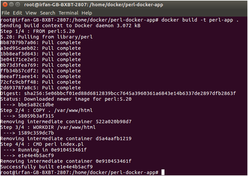 Docker Perl application 3