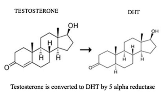 DHT Full Form - javatpoint