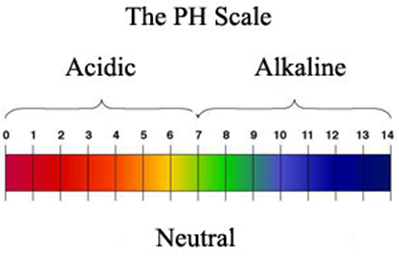 Image result for ph value diagram